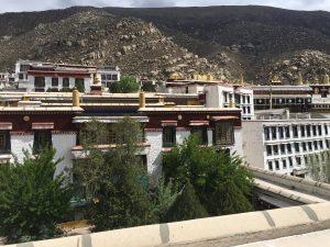 tibet unleashed traveler