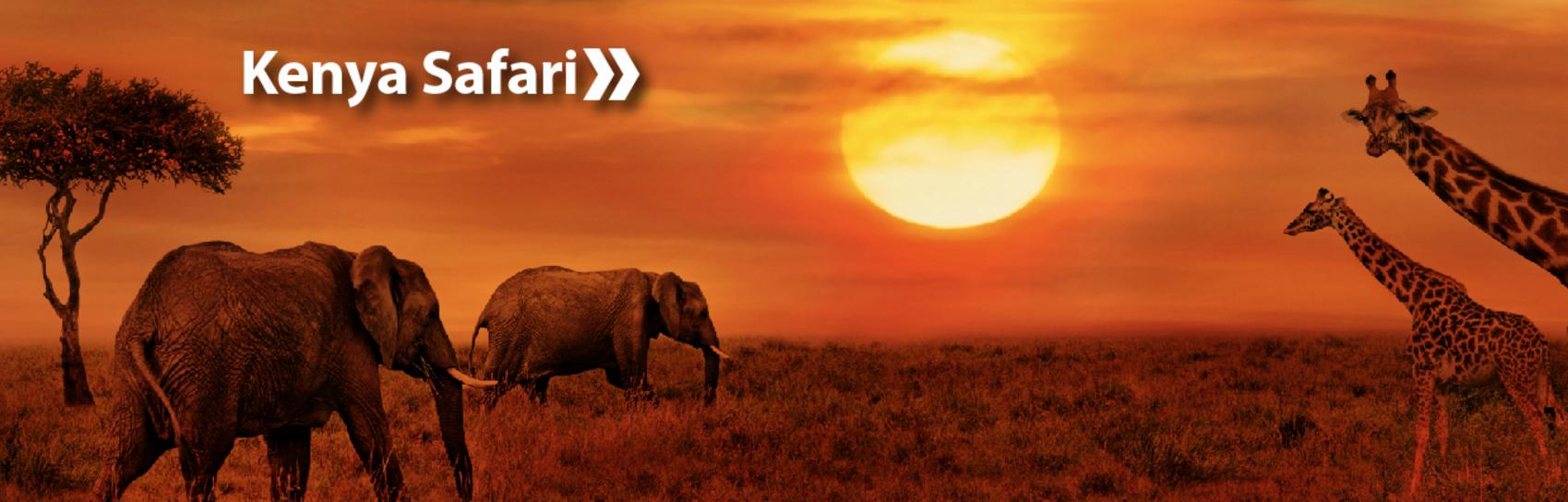 travel africa kenya safari